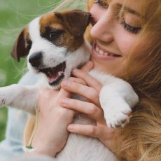 Dog sitter con esperienza