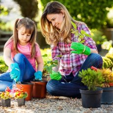 Landscape Gardener/Property Maintence Services