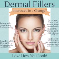 Dermal Fillers / Wrinkle Fillers