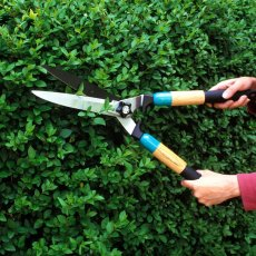 GARDEN MAINTENANCE SERVICES IN LONDON