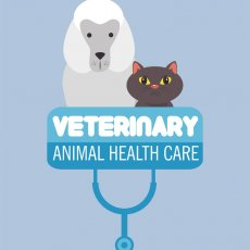Veterinary Sheffield