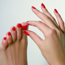 Shellac Manicure & Pedicure