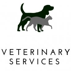 Veterinary services in Liverpool