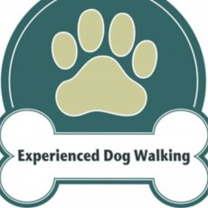 Dog Walking, Pet Sitting & Dog Training