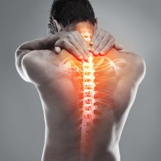 Chiropractic, Physio & Osteopaths Home Visits