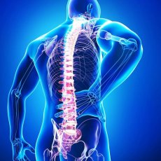 Osteopath Services Home Visit & Clinic in London