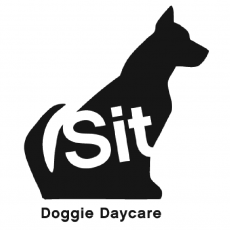 Doggie day care North London