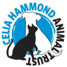 London Veterinary Clinics