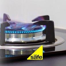 Gas Safe Engineer / Boiler Repair