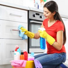 Professional, Domestic Cleaner, House Cleaner