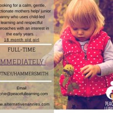 Calm, Gentle, Affectionate, Mothers Help/Junior Nanny