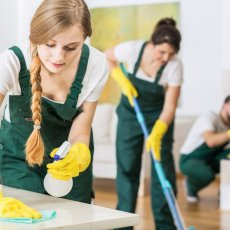 Lady Maid Housekeeping & Cleaning