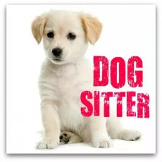 Experienced Dog Sitter - West London